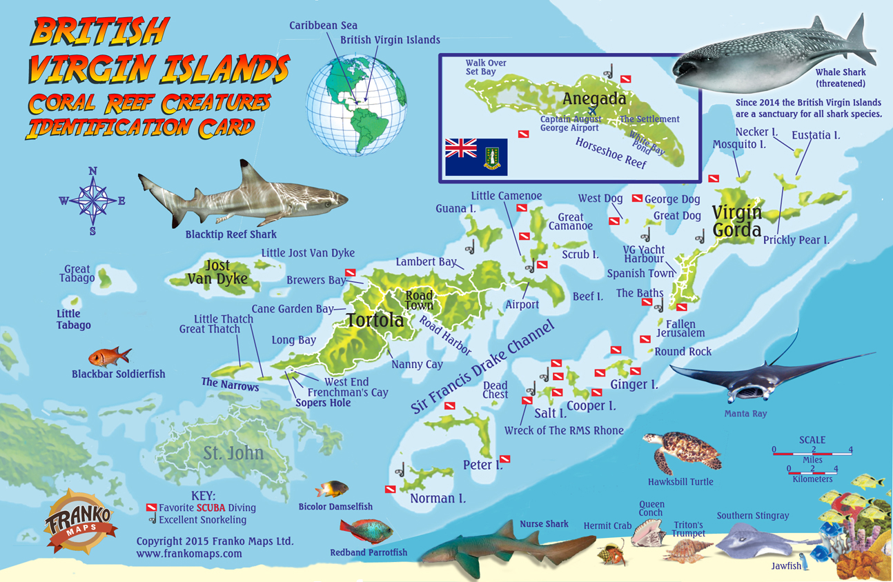 franko maps british virgin islands reef creatures
